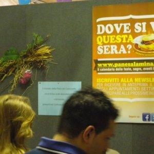 casoncello-2012-barbariga-2